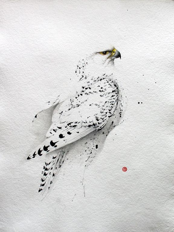 tavlor med fåglar
